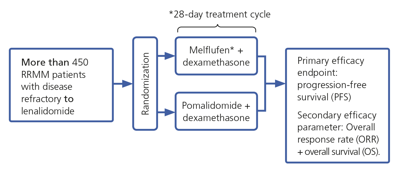 OCEAN Study treatment cycle